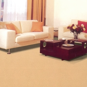 Wall to wall carpet, broadloom carpet, office carpet, roll carpet, contract carpet
